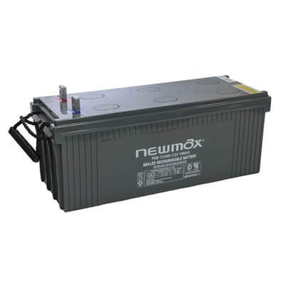 NEWMAX PNB121000 Battery 12V 100Ah Long Life